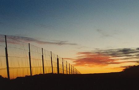 fence_sunset