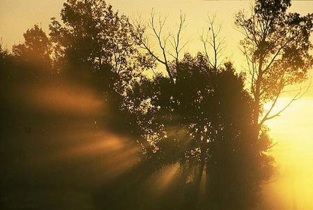 morning_light